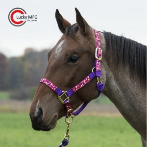 Colorful Ribbon Horse Halter