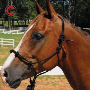 Handcrafted Horse Halter
