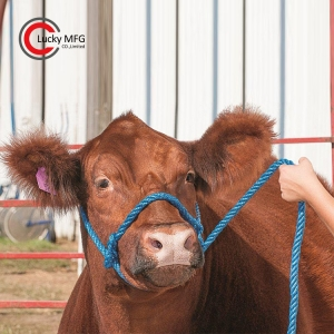 Rope Cow Halter