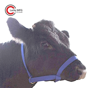 Nylon Cattle Halter