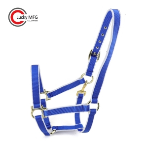 Custom Race Course Horse Halter With Brass Snap Hook