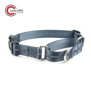 Reflective Nylon Dog Martingale Collar