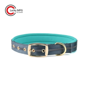 Luxury Gold Metal Buckle Neoprene Dog Collar