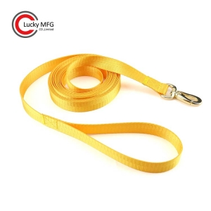 Dog Leash With Gold Lobster Clasp